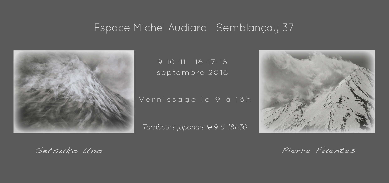 SUNO_PFUENTES_visuel Semblancay_2016